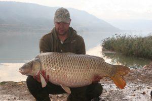 Ebro Catfish and Carp Gallery